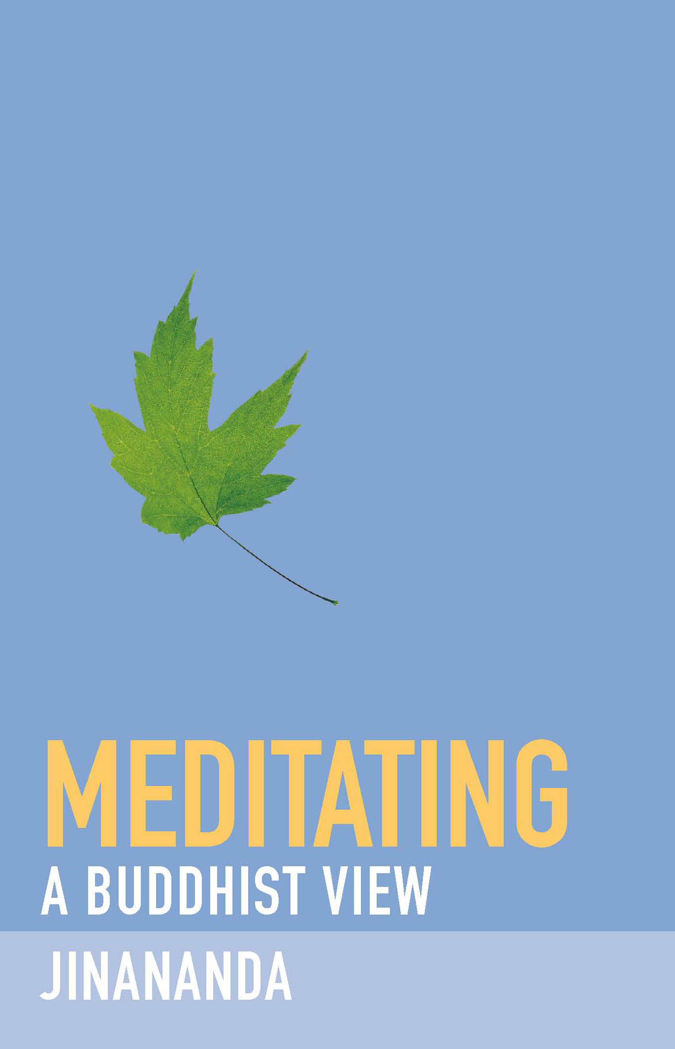 Meditation: the setting up of conditions for an ever more positive mental state to arise