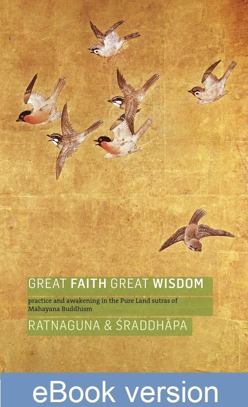Great Faith Great Wisdom ebook new