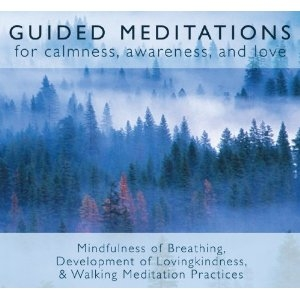 Guided Meditations for Calmness Awareness and Love CD by Bodhipaksa