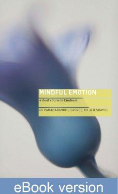 Mindful-emotion saved for web