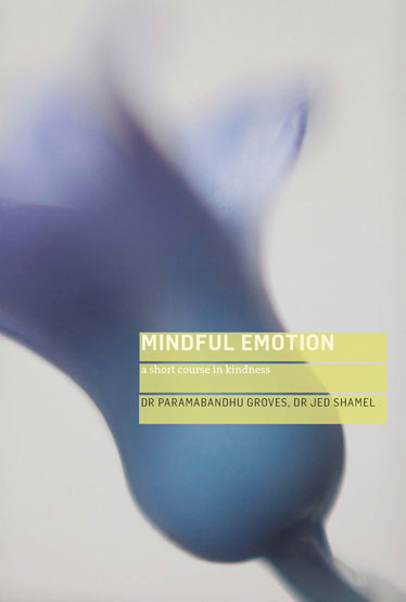 mindful-emotion-18-xi-4-front-only-book-page
