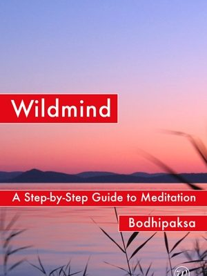 Wildmind: A Step-by-Step Guide to Meditation by Bodhipaksa