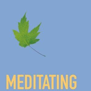 Meditating: A Buddhist View by Jinananda