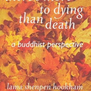 There's More to Dying Than Death by Shenpen Hookham