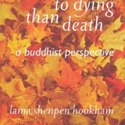 There's More to Dying Than Death DRM-free eBook (epub & mobi formats) by Shenpen Hookham