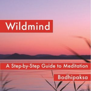 Wildmind DRM-free eBook (epub & mobi formats) by Bodhipaksa