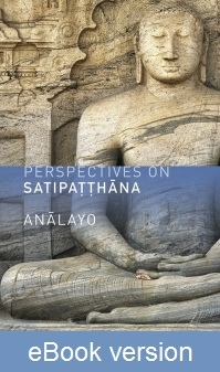 Perspectives on Satipatthana DRM-free eBook (epub & mobi formats) by Anālayo